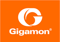 Gigamon Systems